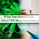 CBD oil drug interactions